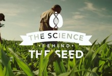 Terral Seed – Science of the Seed